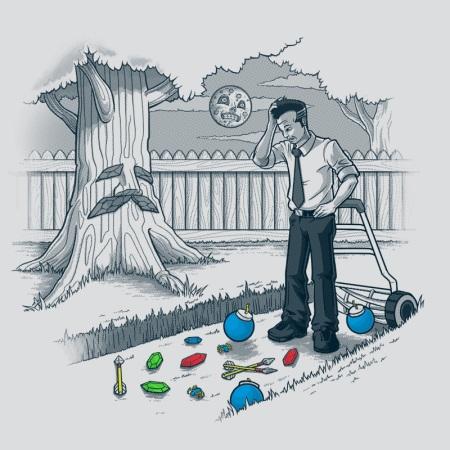 Link's yard