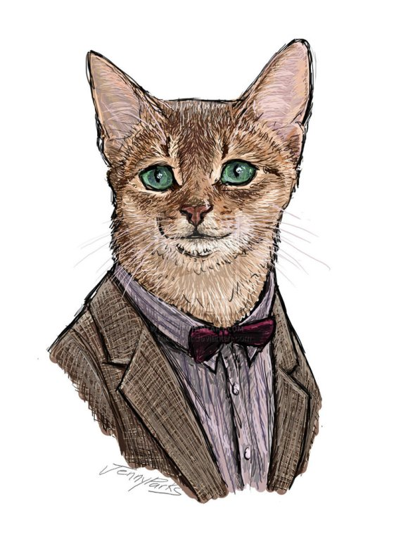 The 11th Doctor as a cat